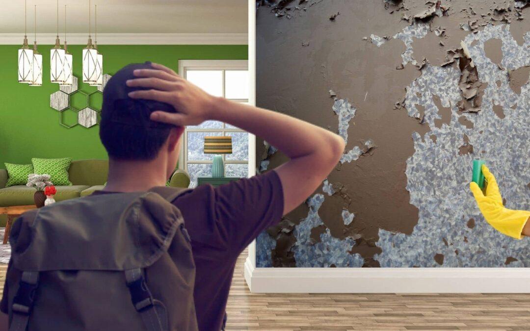 Fukt i vägg-väggrengöring